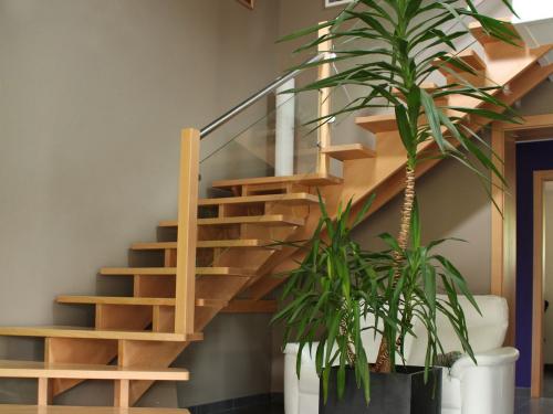 Escalier hêtre2.jpg