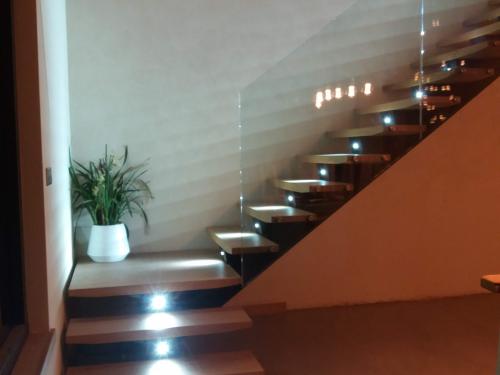 Escalier avec limon central en acier, garde corps en verre et éclairage spot.jpg